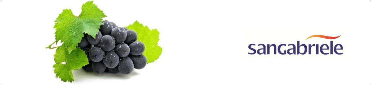 microsoft dynamics nav flexnav wine case history san gabriele