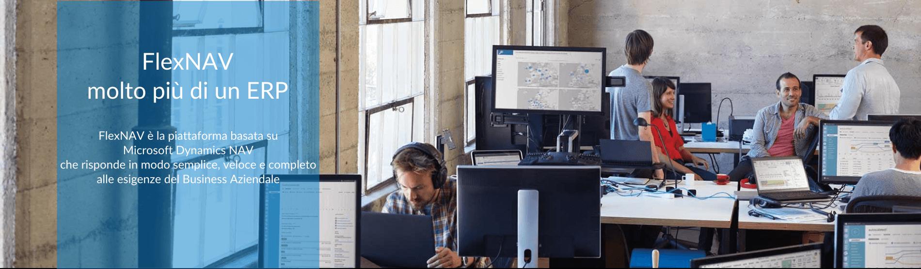 FlexNAV microsoft dynamics nav piattaforma
